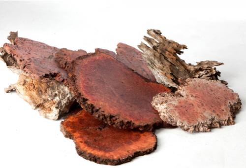 Wooden slices